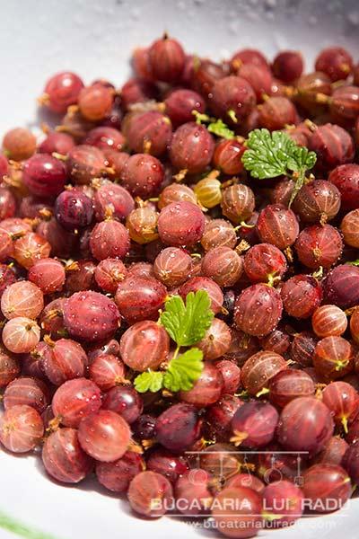 ingrediente dulceata de agrise rosii