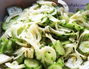 salata fenicul crastaveti